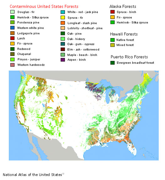 Figure 1.13: This map shows forest cover types, and was created by US Forest Service scientists. Click on the link below to view the map in its original context, where you can view different types of forest cover on the map by moving your cursor over the categories in the legend at the top of the image. Image from URL: http://www.nationalatlas.gov/articles/biology/a_forest.html