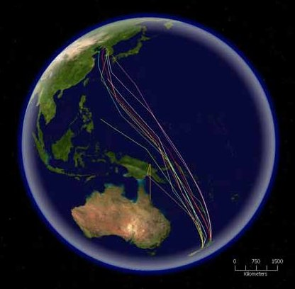 Figure 6.67: An epic journey – the migratory route of the Bar-tailed Godwit entails a 6300 mile non-stop flight from New Zealand to their summer breeding grounds. Image from URL: http://en.wikipedia.org/wiki/File:Migrationroutes.svg