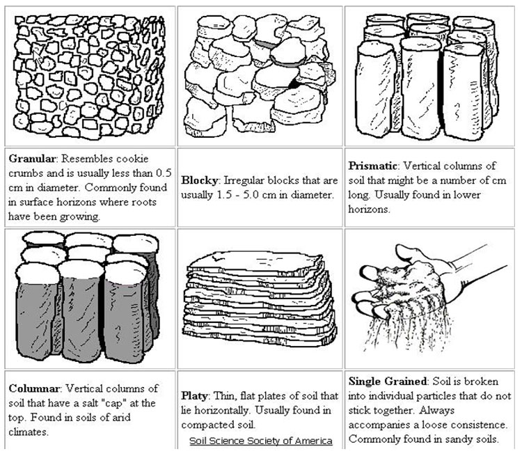 Image from URL: http://www.soils.umn.edu/academics/classes/soil2125/doc/s3chap1.htm