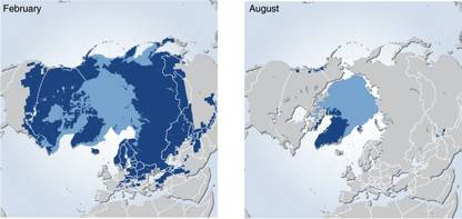 Figure 9.17: Mean snow-cover extent in the Northern Hemisphere 1966-2006. Snow occurs predominantly on the northern continents, on the sea ice of the Arctic Ocean and on Antarctica (not shown). Image from UNEP.