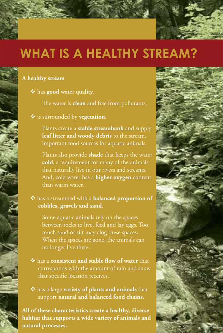 Figure 9.15: The essential characteristics of a healthy stream. Image from: How Healthy are Our Streams? City of Bellevue Biological Assessment (1998 - 2007)
