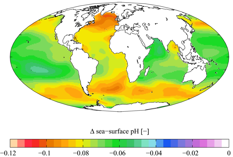 Figure 9.13: Estimated change in sea surface pH caused by anthropogenic CO2 between the 1700's and the 1990's. Note that, while the darker orange and red areas above indicate the greatest acidification, the acidity of the vast majority of the Earth's oceans has increased since the 1700's. Image from URL: http://en.wikipedia.org/wiki/File:WOA05_GLODAP_del_pH_AYool.png