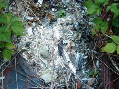 Figure 9.6: Asbestos ore from the Karst mine. Image from URL: http://deq.mt.gov/StateSuperfund/Karstolite.mcpx