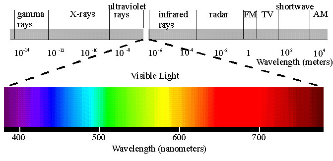 Figure 7.52: The visible spectrum, as it relates to other wavelengths and frequencies, including ultraviolet and infrared light. Image from URL: http://www.dnr.sc.gov/ael/personals/pjpb/lecture/lecture.html